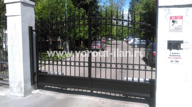 Распашные ворота прозрачные чёрные_фото 1