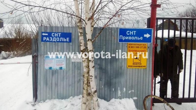 МО_Мытищинский район_СНТ Приволье_ворота откатные решетчатые прозрачные_3
